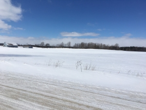 7458 Sideroad 3, Mount Forest, Ontario (ID 181148)